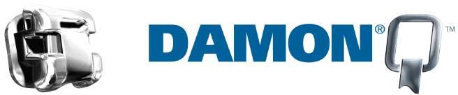 Damon Q